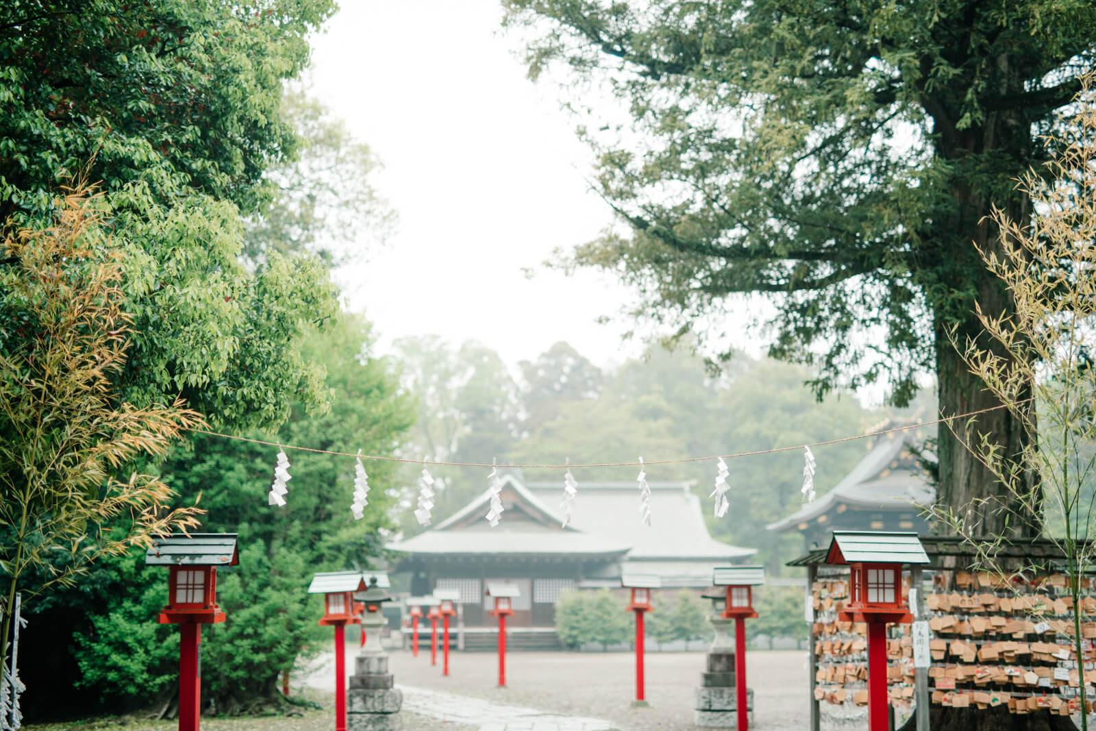 鷲宮神社 境内 参道と本殿 七五三とお宮参りの出張撮影