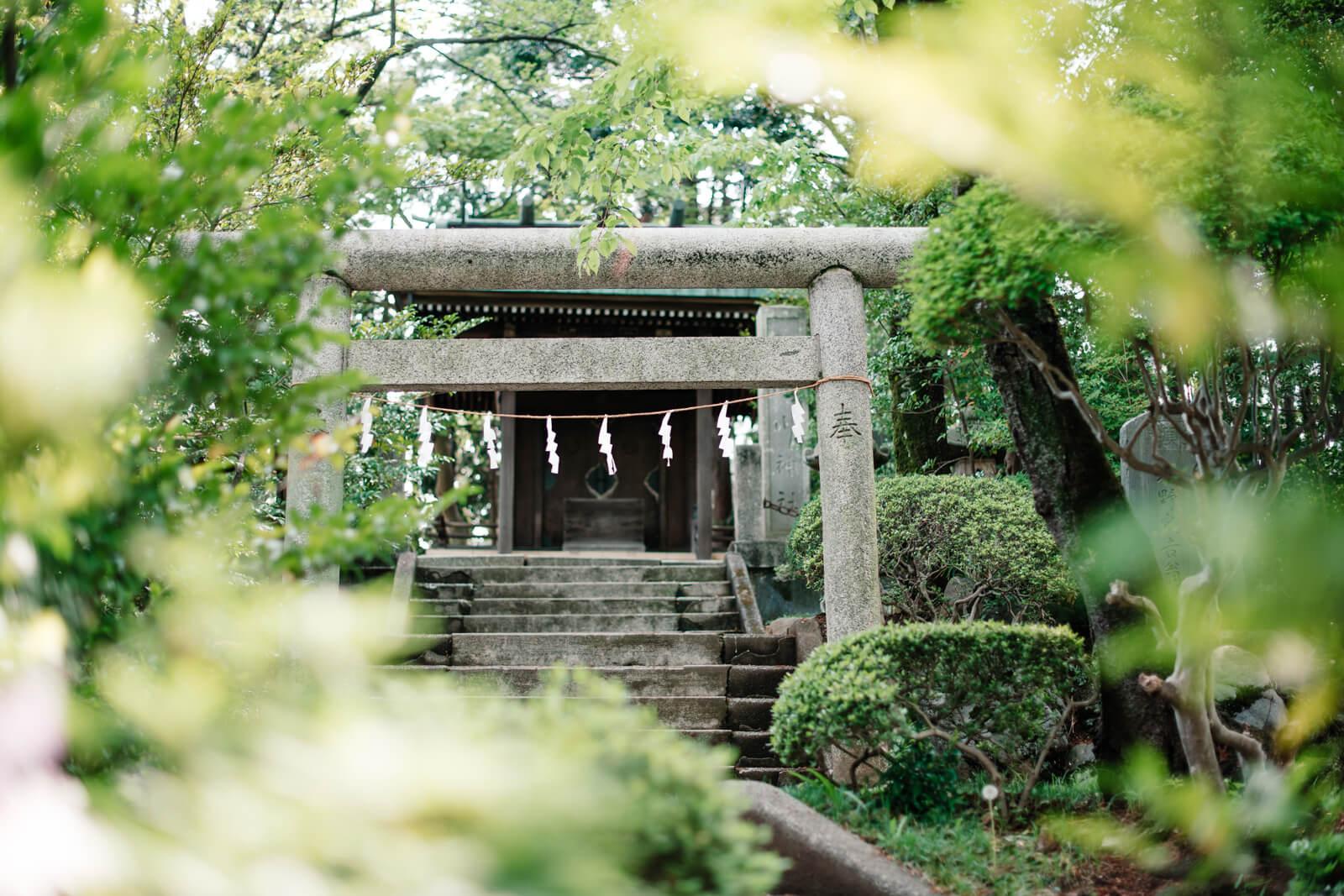 狭山八幡神社 七五三 お宮参りの出張撮影
