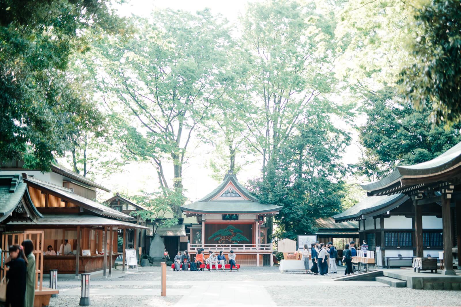 川越氷川神社 境内 七五三とお宮参りの出張撮影