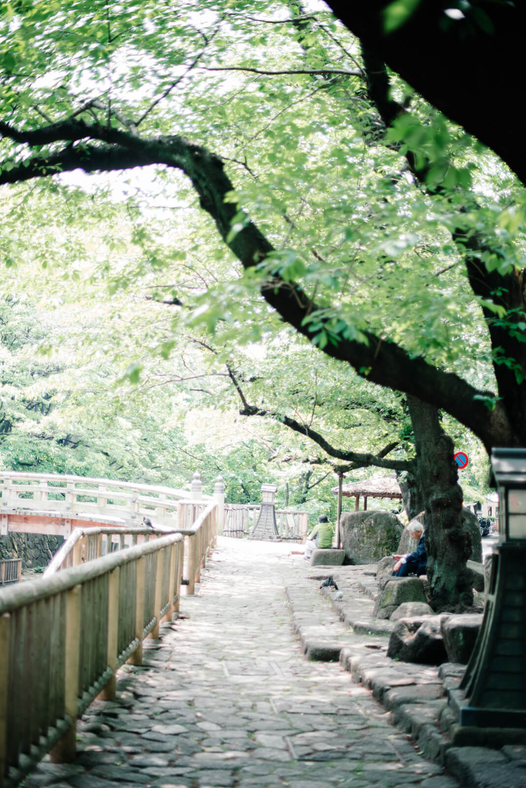 王子神社 出張撮影