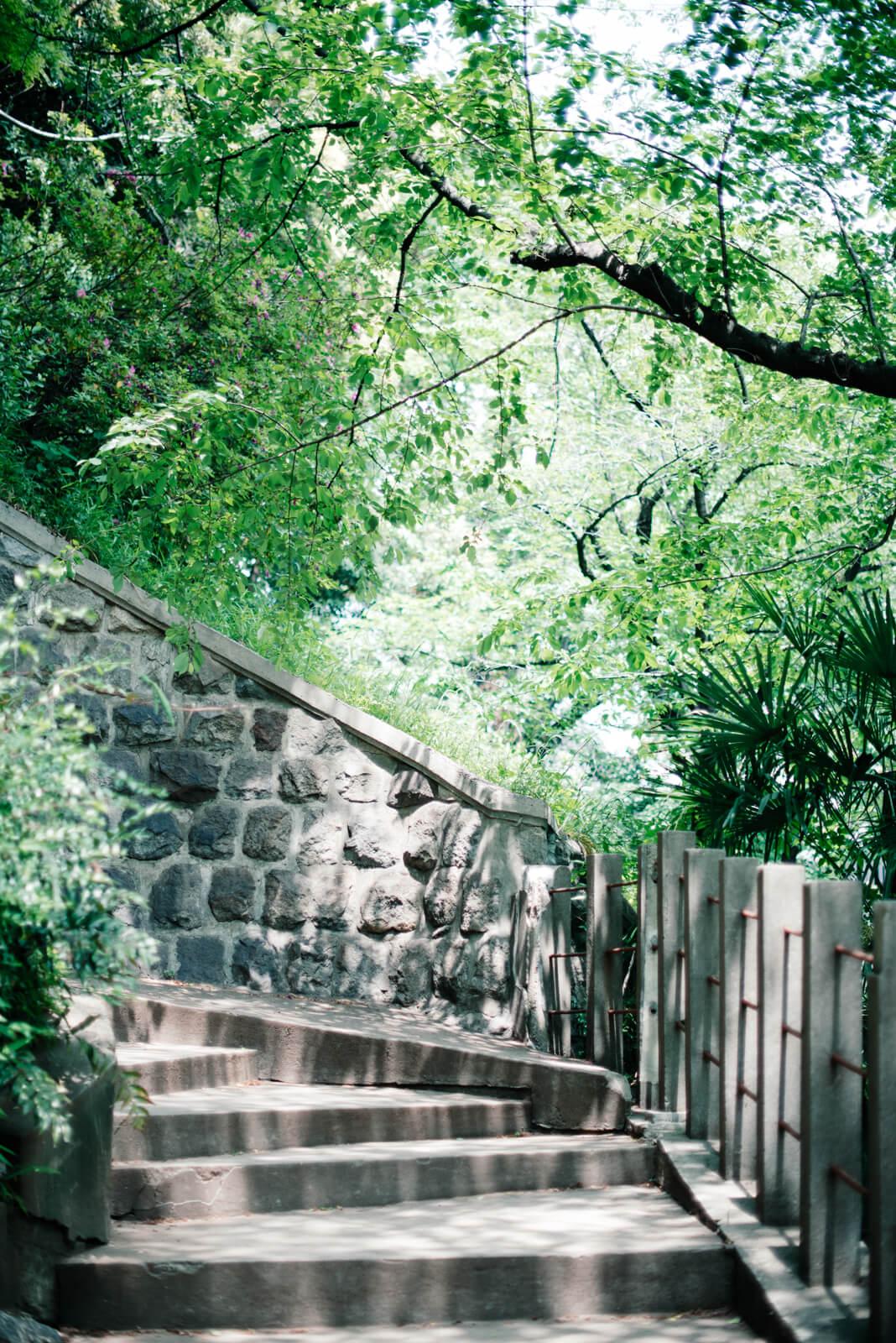 王子神社 階段